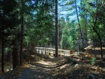 lake-siskiyou-trail-057